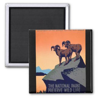 National Parks Magnet