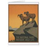 National Parks - Mt. Goats Card