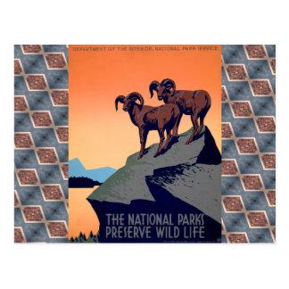 National Parks Postcard