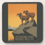 National Parks Preserve Vintage Ad. Coasters