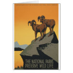 National Parks - Preserve Wild Life Card