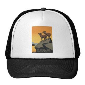 National Parks - Preserve Wild Life Trucker Hat