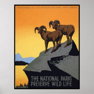 National Parks Preserve Wild Life Poster