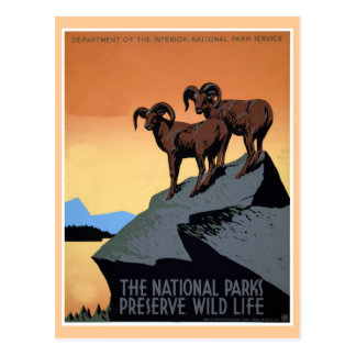 National parks WPA travel poster Post Card