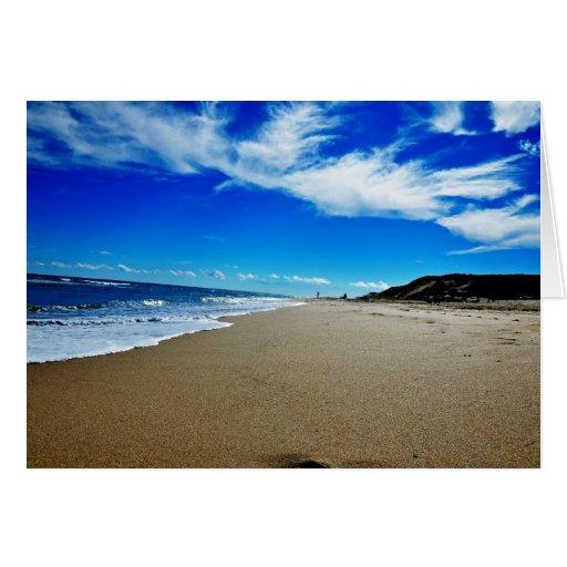 National Sea Shore, Cape Cod Blank Note Card