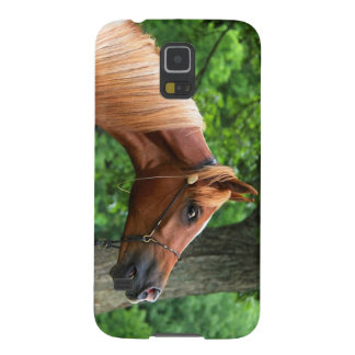 National Show Horse Galaxy S5 Cover