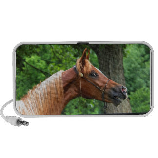 National Show Horse Mp3 Speakers