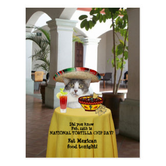 National Tortilla Chip Day Funny Cat Postcard