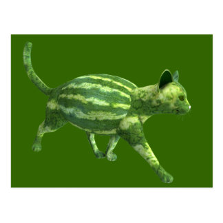 National Watermelon Day Cat Post Cards