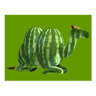 National Watermelon Day Dromedary Post Card