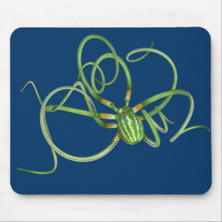 National Watermelon Day Octopus Mouse Pad