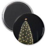 National Xmas Tree & Washington Monument at Night Magnet