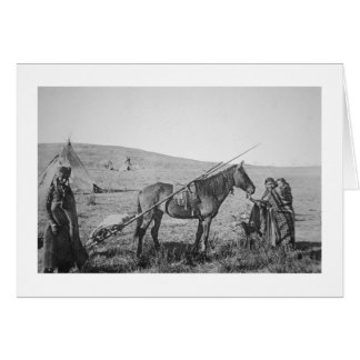 Native American Cree people of Western Canada, c.1 Card