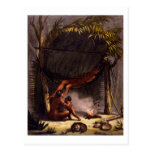 Native American Family under a Leaf Shelter (colou Post Card