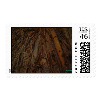 Native American Hut Stamps