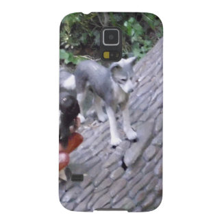 Native American Indian Boy with Wolf Galaxy S5 Covers