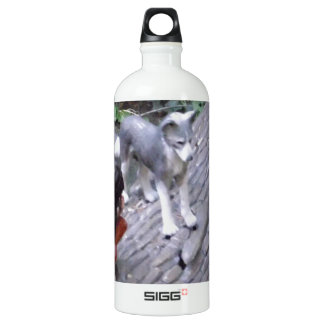 Native American Indian Boy with Wolf SIGG Traveler 1.0L Water Bottle