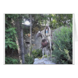 Native American Indian Chief with Horse Greeting Card