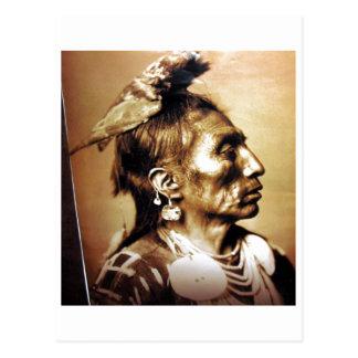 Native American Indian Vintage Portrait Postcard