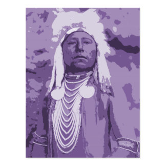 Native American Indian, Which Way Crow Indian Postcard