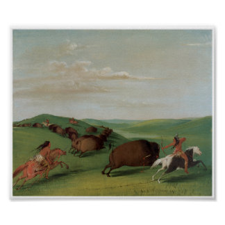 Native American Indians Buffalo Chase 1832 Art Pri Poster