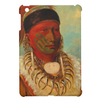 Native American iPad Mini Cover