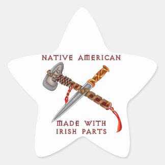 Native American/Irish Star Sticker