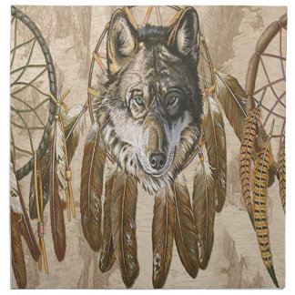 Native American Napkins