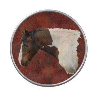 Native American Paint Horse & Tooled Leather Photo Candy Tins