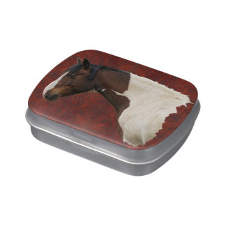 Native American Paint Horse & Tooled Leather Photo Jelly Belly Candy Tins