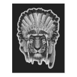 Native American Tiger Chief Postcard