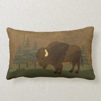 Native American Wisdom Pillows