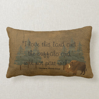Native American Wisdom Throw Pillow