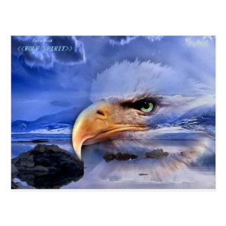 NATIVE AMERICAN / WOLF SPIRIT ART POSTCARD