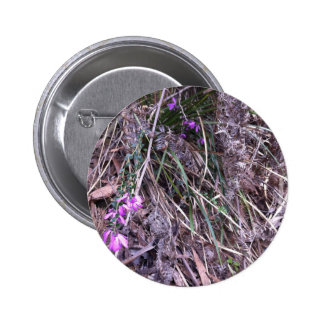 Native Australian wild grasses in flower Pinback Button