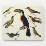 Native birds, including the Toucan (centre), Amazo Mouse Pads
