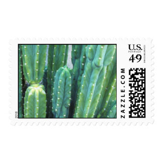 Native Californians Postage