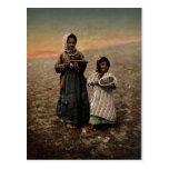 Native children from neighborhood of Jerusalem, Ho Postcard