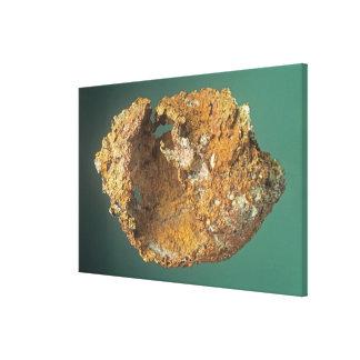Native Copper (Cu), Michigan, USA Canvas Print
