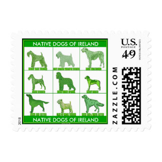 Native Dogs of Ireland Postage Stamp