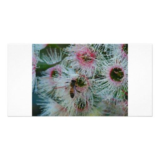 Native Flower Customized Photo Card