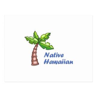Native Hawaian Post Card