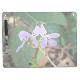 Native Orchid with various purple shades Dry-Erase Whiteboard