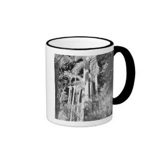 Native Royal Palms in Fakahatchee Strand, Ringer Coffee Mug