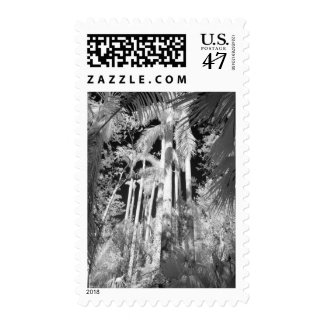 Native Royal Palms in Fakahatchee Strand, Postage Stamp