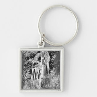 Native Royal Palms in Fakahatchee Strand, Silver-Colored Square Keychain