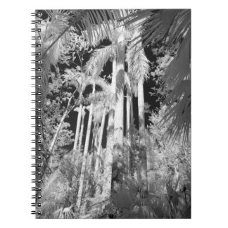 Native Royal Palms in Fakahatchee Strand, Spiral Notebook