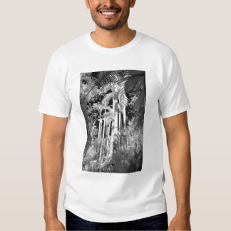 Native Royal Palms in Fakahatchee Strand, T-shirt
