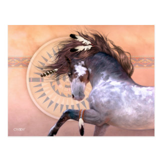 Native Spirit I Postcard