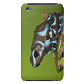 Native to Panama Barely There iPod Case